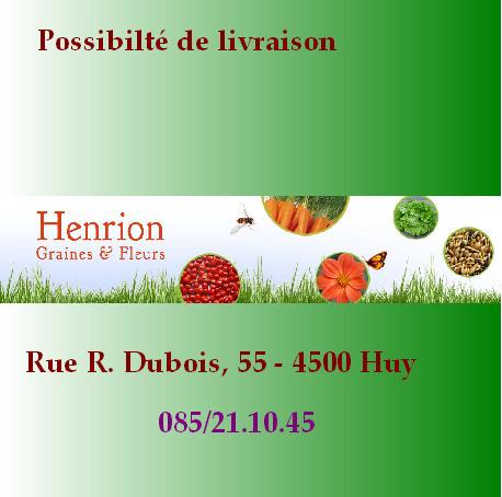 Henrion Fleurs Site